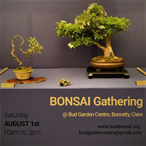 Bonsai gathering poster